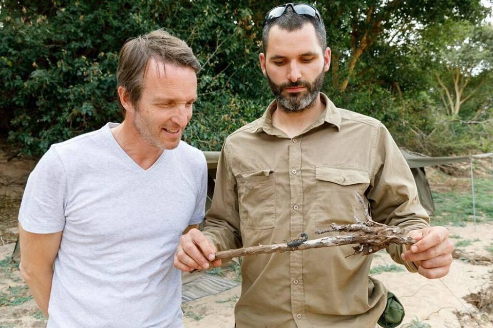 damien lecouvey conseiller survie et serpents tv émissions