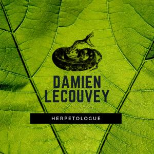 Logo Damien Lecouvey herpétologie