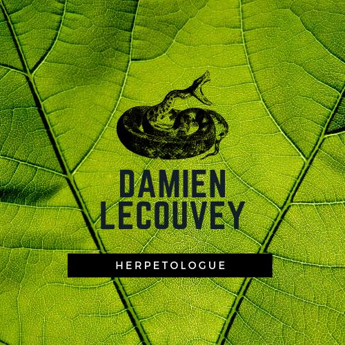 Damien Lecouvey